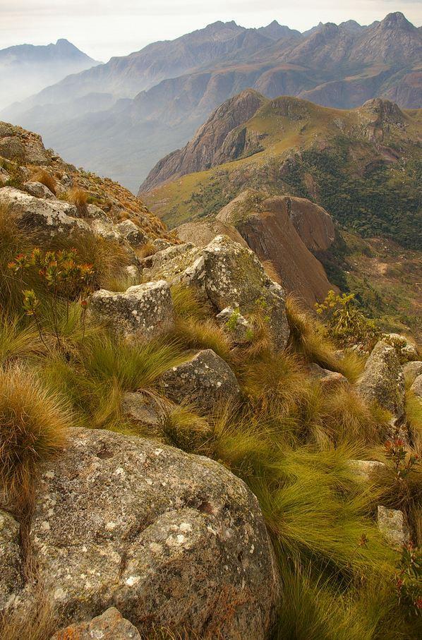 """Mount Mulanje / Malawi ."""