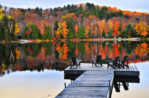 Autumn Dock, Maine