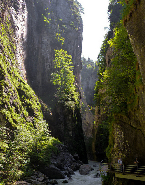 Aar River Gorge in Berne Canton, Switzerland