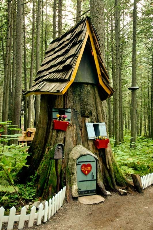 The Enchanted Forest, Revelstoke, British Columbia