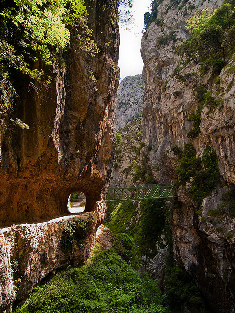 Hiking trail inside the canyon of Rio Cares in Asturias, Spain