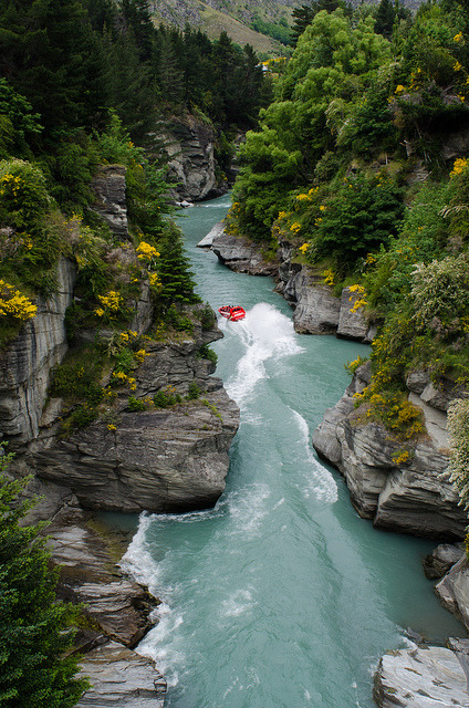 Jet boating the Shotover River, South Island, New Zealand