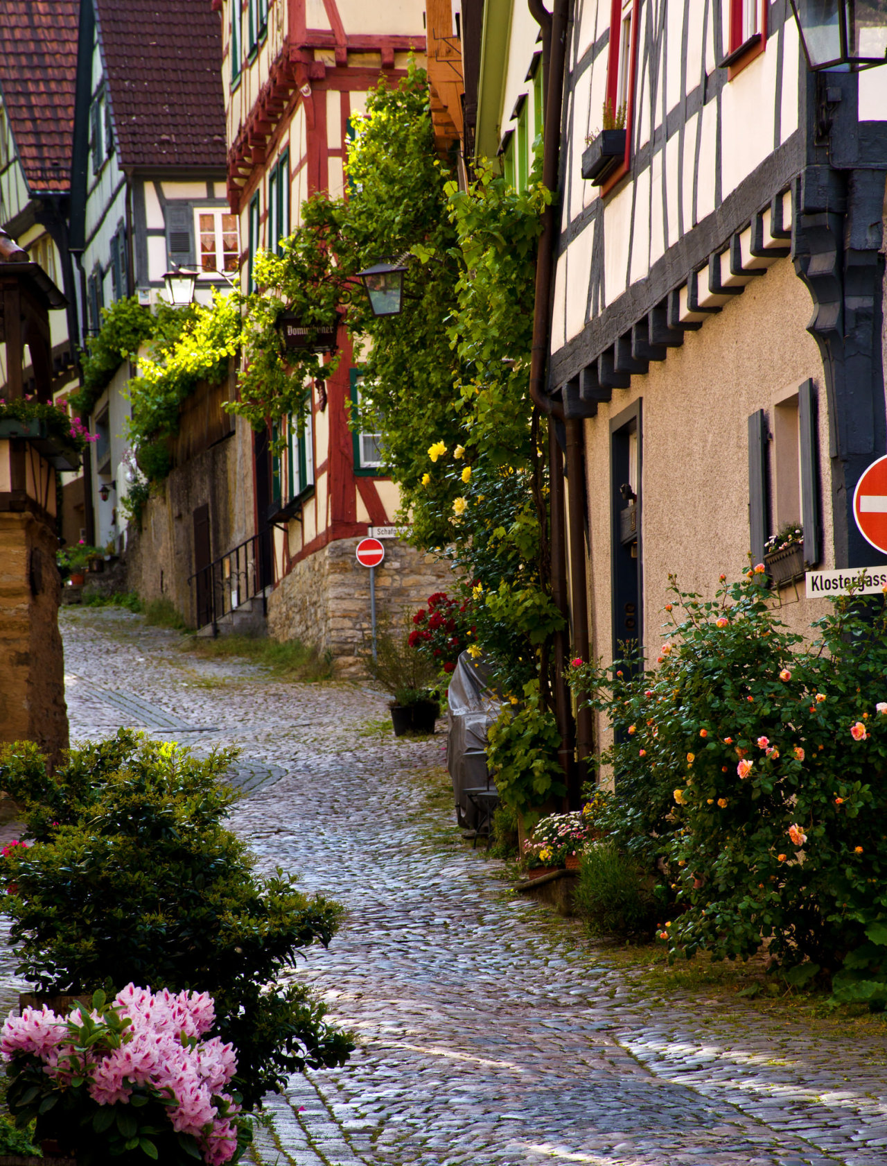 Bad Wimpfen / Germany